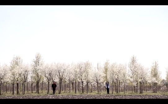 { }, 2015 | Video still